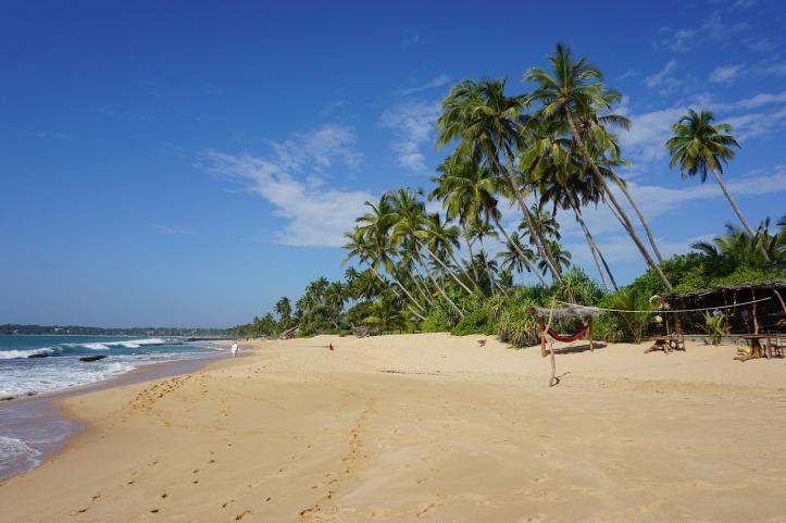 beach-2314336_1280